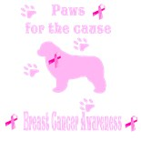 Breast Cancer Cause
