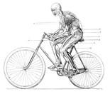 Human Transporter