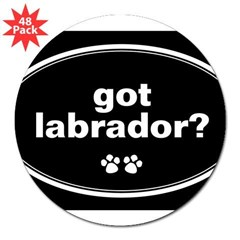 "Got Labrador? Oval 3"" Lapel Sticker (48 pk)"