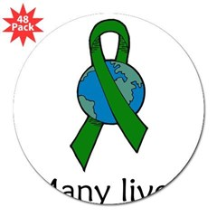"One Person. Many Lives. Oval 3"" Lapel Sticker (48 pk)"