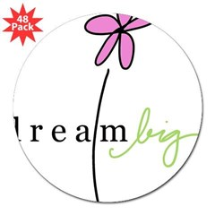 "Dream Big Rectangle 3"" Lapel Sticker (48 pk)"