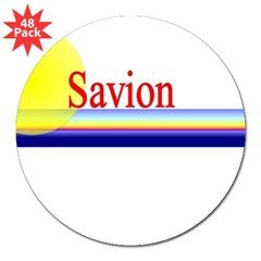 Savion Rectangle 3&quot; Lapel Sticker (48 pk)