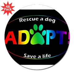 "Adopt Sticker (Multi on Black) 3"" Lapel Sticker (48 pk)"