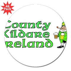 "County Kildare, Ireland Rectangle 3"" Lapel Sticker (48 pk)"