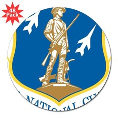 "Air National Guard Rectangle 3"" Lapel Sticker (48 pk)"