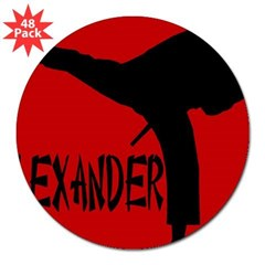 "Alexander Martial Arts Rectangle 3"" Lapel Sticker (48 pk)"
