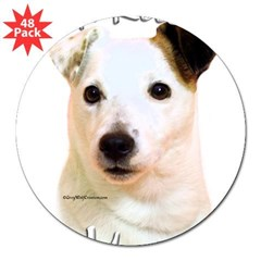 "JRT Mom2 Rectangle 3"" Lapel Sticker (48 pk)"