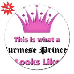 "This is what an Burmese Princess Looks Like 3"" Lapel Sticker (48 pk)"