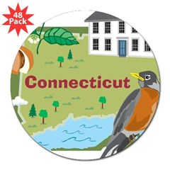 Connecticut Map 3&quot; Lapel Sticker (48 pk)