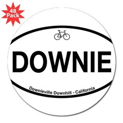 "Downieville Downhill 3"" Lapel Sticker (48 pk)"