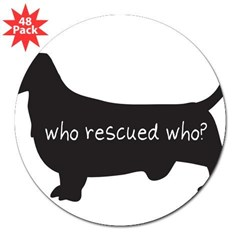 "Sticker: ""Who rescued who?"" 3"" Lapel Sticker (48 pk)"