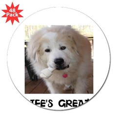 "Life's Great 3"" Lapel Sticker (48 pk)"