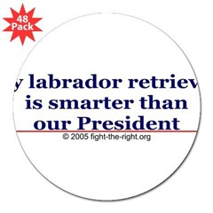 "My labrador retriever is smarter (bumper sticker) 3"" Lapel Sticker (48 pk)"
