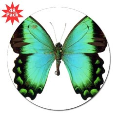 "Green Butterfly Rectangle 3"" Lapel Sticker (48 pk)"