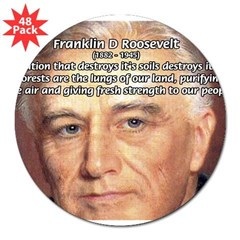 "American President FDR Rectangle 3"" Lapel Sticker (48 pk)"