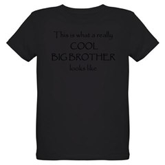 Cool big brother Organic Kids T-Shirt (dark)