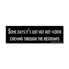 Some Days Car Magnet 10 x 3