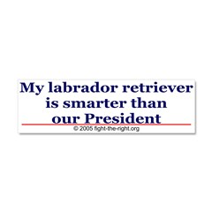 My labrador retriever is smarter (bumper sticker) Car Magnet 10 x 3