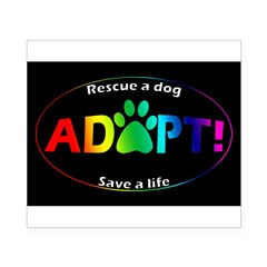 Adopt Sticker (Multi on Black) Beer Label