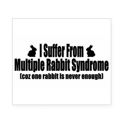 Multiple Rabbit Syndrome Beer Label