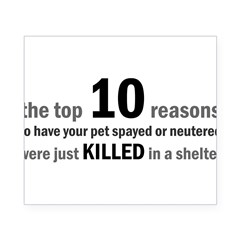 10 Reasons to Spay/Neuter Rectangle Beer Label