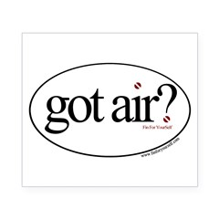 Got Air? Oval Beer Label
