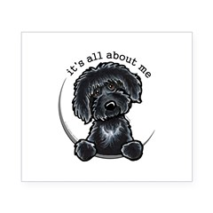 Black Labradoodle IAAM Beer Label