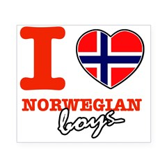 I love Norwegian Boy Beer Label