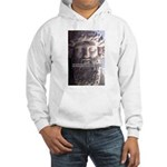 Plato: Wisdom Knowledge Play Hooded Sweatshirt