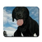 Jun Lab of the Month Mousepad
