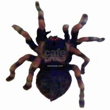 TARANTULA CITY - DEZIGN8 / CafePress - Spidey Gear for everyday merchandise that everyone needs. Buy a Guardian Tarantula Design by DEZIGN8